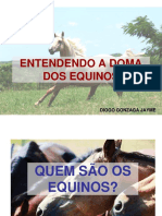 Palestra Do Ma