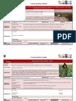 FICHAS PDU ambiental