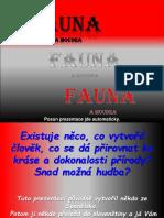 Fauna_ J