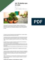 Farmácia No Quintal_ 10 Plantas Que Você Deveria Ter Em Casa - Notícias - Saúde