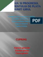 PH 40 CTFC Badea Luminita (1)