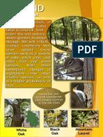 trail plaque upland 12-8