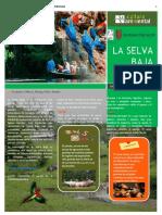 Boletin Informativo Ecorregion Selva Baja
