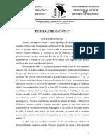 6367_Pestera.doc