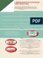u1. Infografia-Org Del Sector Social