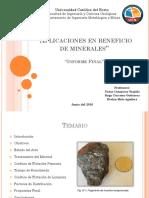 Presentación Final Beneficio Palma-Salas