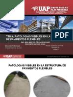 Patologias Del Pavimento