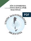 Enmienda Tierra del Fuego.pdf