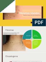 Fibromas Dermatología