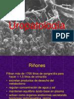 Anatomía-Riñón y Glomerulopatías