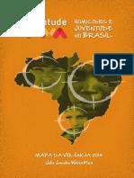 Mapa2014_AtualizacaoHomicidios.pdf