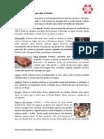 Limpeza e Energização Cristais.pdf