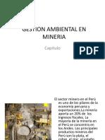 Gestion Ambiental en Mineria II