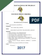 Delineador Labial - Informe