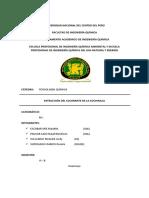 EXPERIMENTAL-cochinilla.docx