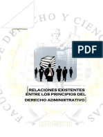 Informe- Relacion Entre Los Principios Del Derecho Administrativo