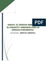 ENSAYO AMBIENTAL.pdf