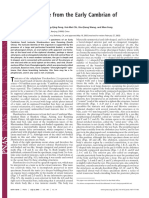 uro 2.pdf
