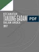 Kecamatan Tanjung Gadang Dalam Angka 2017