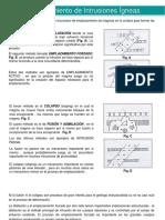 Intrusiones (1).pdf