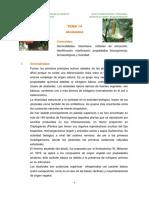 ALCALOIDES-1