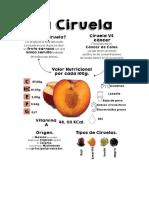 para hacer infografia.docx