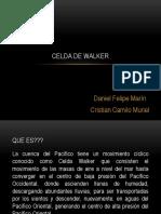 Celda de Walker