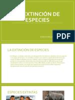 La Extinción de Especies