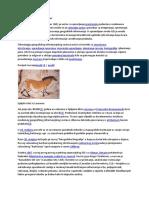 wikipedija-povijest gisa