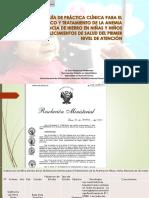 5.- Guia de Practica Clínica Para Tratar La Anemia Rm 028 -2015
