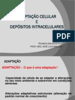 adaptaocelular-160323132907