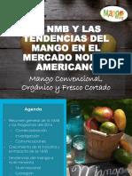 Nmb Apem Congreso