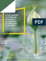Ey Como Pueden Contribuir Las Empresas a Los Objetivos de Desarrollo Sostenible