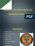 Manual de Organización.pptx