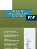 Oclusion Intestinal UEES