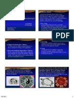 Crono+e+Tartaruga+-+2010.pdf
