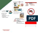 denguetriptico-120501194247-phpapp02.doc