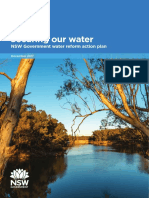 Nsw Government Water Reform Action Plan