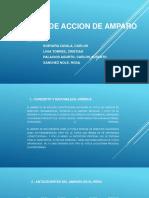 Proceso de Accion de Amparo -Ppt