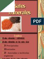 salesminerales21-120212173235-phpapp01
