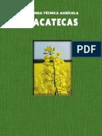 cultivo zacatecas