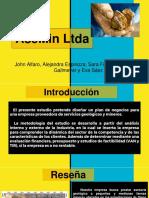 Proyecto-AseMin-Ltda1