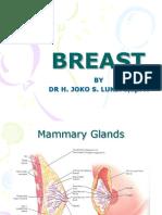 Breast New