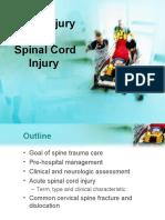 Spinal_injury1_2_ppt.pdf