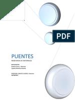 Proyecto-Puentes