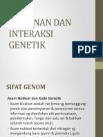 Konsep Kelainan&Interaksi GEN (2)