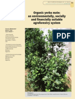 informe sobre yerba organica en misiones.pdf
