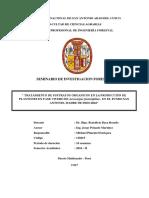 Caratula-Indice Michael PDF