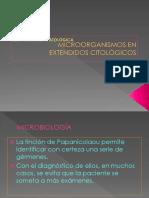Microorganism Os