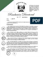 RD-2017-00119-999 Lineamiento DU 004-2017.pdf
